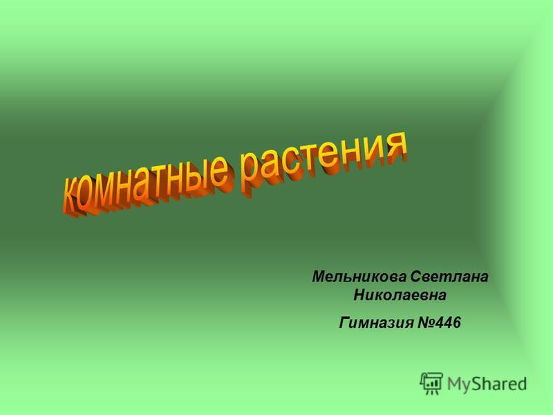 Мельникова Светлана Николаевна Гимназия 446