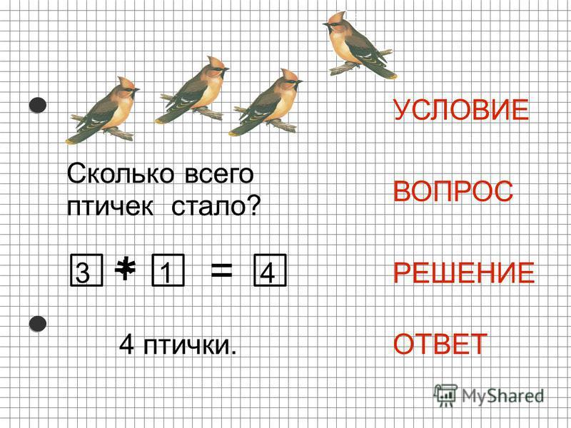 * = УСЛОВИЕ ВОПРОС РЕШЕНИЕ ОТВЕТ 41 + Сколько всего птичек стало? 4 птички. 3