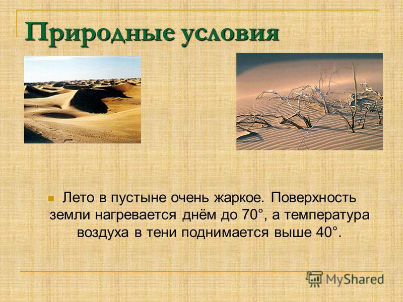 Природные условия Лето в пустыне очень жаркое. Поверхность земли нагревается днём до 70°, а температура воздуха в тени поднимается выше 40°.