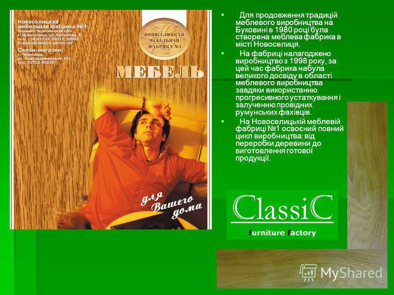 Для продовження традицій меблевого виробництва на Буковині в 1980 році була створена меблева фабрика в місті Новоселиця. На фабриці налагоджено виробництво з 1998 року, за цей час фабрика набула великого досвіду в області меблевого виробництва завдяк