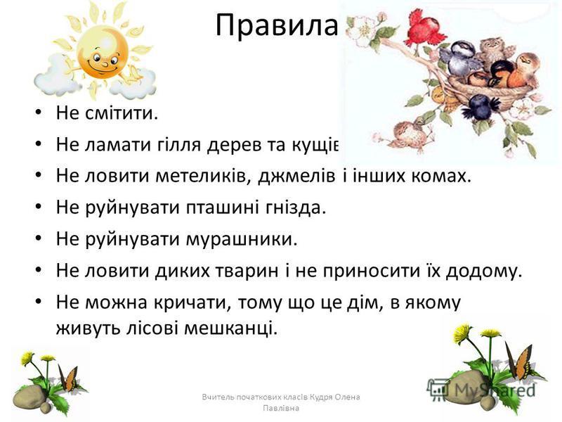 Правила Не смітити. Не ламати гілля дерев та кущів. Не ловити метеликів, джмелів і інших комах. Не руйнувати пташині гнізда. Не руйнувати мурашники. Не ловити диких тварин і не приносити їх додому. Не можна кричати, тому що це дім, в якому живуть ліс