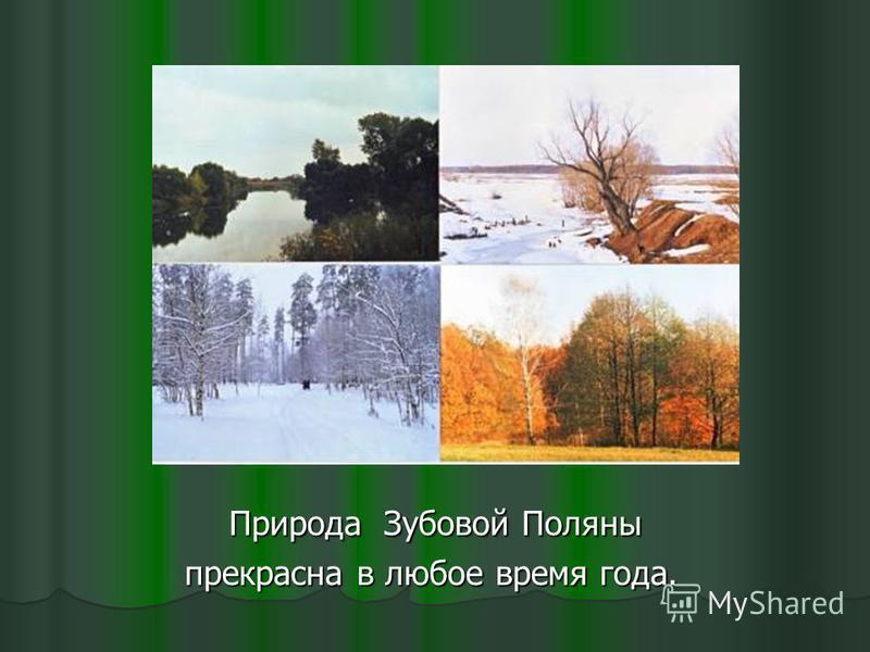 Природа Зубовой Поляны Природа Зубовой Поляны прекрасна в любое время года. прекрасна в любое время года.