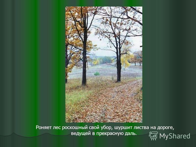 Роняет лес роскошный свой убор, шуршит листва на дороге, ведущей в прекрасную даль.