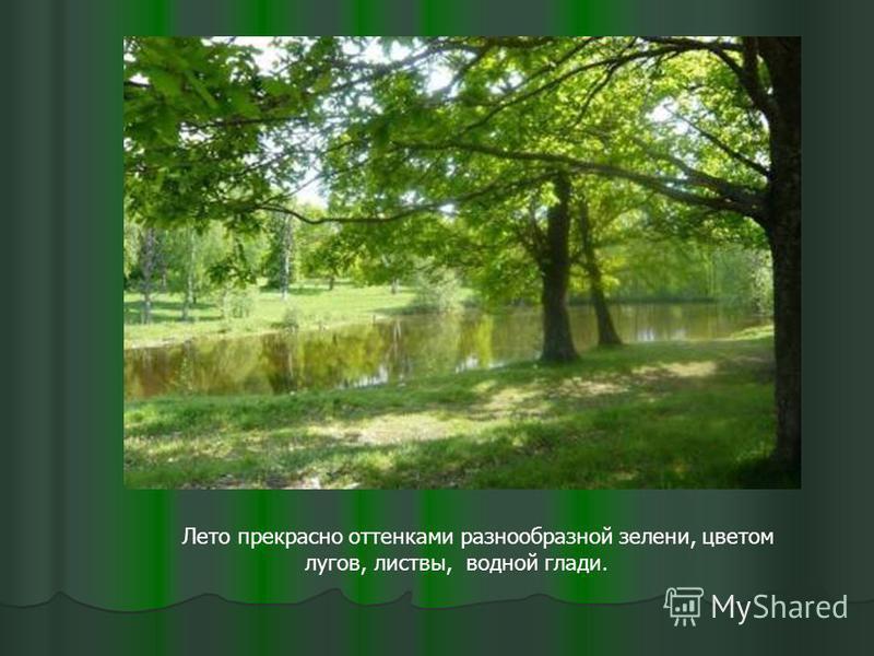 Лето прекрасно оттенками разнообразной зелени, цветом лугов, листвы, водной глади.