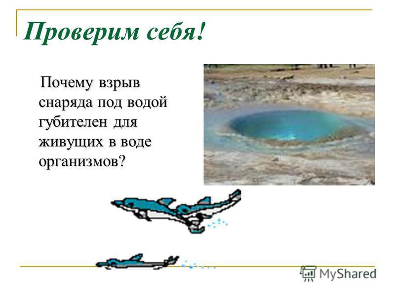 Проверим себя! Почему взрыв снаряда под водой губителен для живущих в воде организмов? Почему взрыв снаряда под водой губителен для живущих в воде организмов?