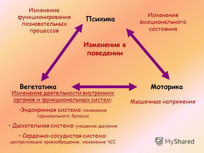 Психика Вегетатика Моторика Изменения эмоционального состояния Изменение функционирования познавательных процессов Изменение деятельности внутренних органов и функциональных систем: Эндокринная система: изменение гормонального баланса Дыхательная сис
