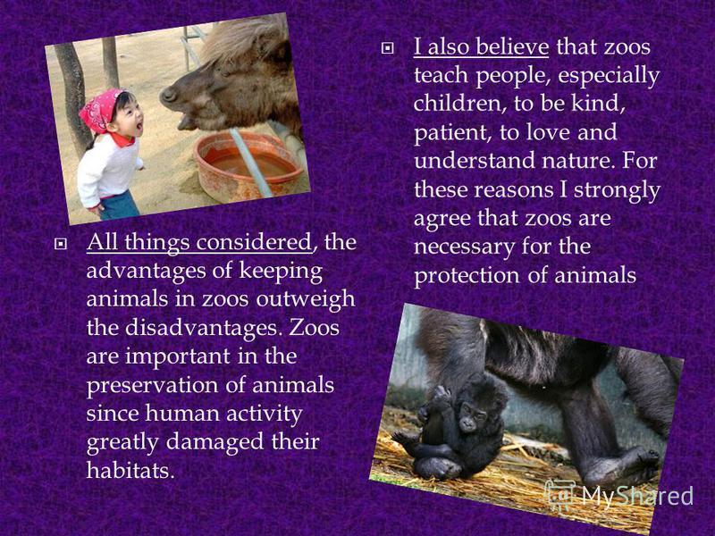 All things considered, the advantages of keeping animals in zoos outweigh the disadvantages. Zoos are important in the preservation of animals since human activity greatly damaged their habitats. I also believe that zoos teach people, especially chil