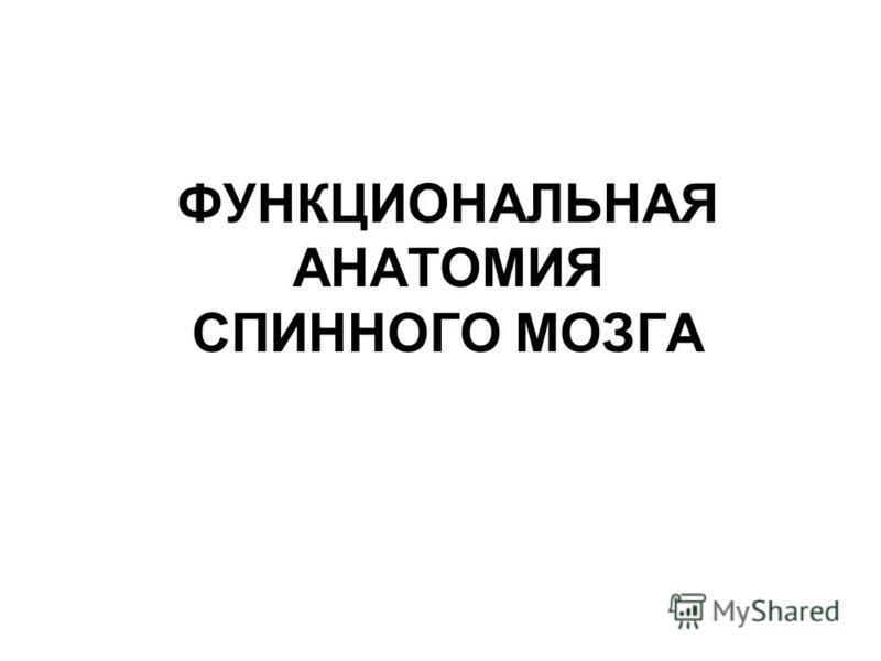 ФУНКЦИОНАЛЬНАЯ АНАТОМИЯ СПИННОГО МОЗГА