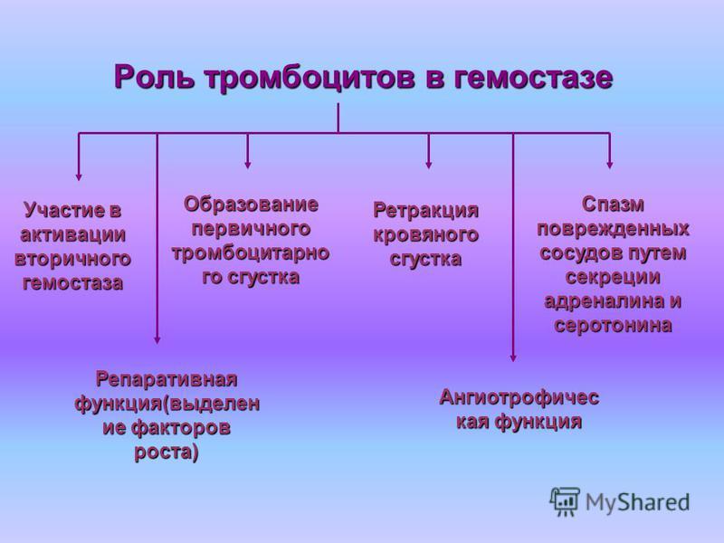 Роль тромбоцитов в гемостазе Роль тромбоцитов в гемостазе Ангиотрофичес кая функция Спазм поврежденных сосудов путем секреции адреналина и серотонина Участие в активации вторичного гемостаза Образование первичного тромбоцитарноййй го сгустка Репарати