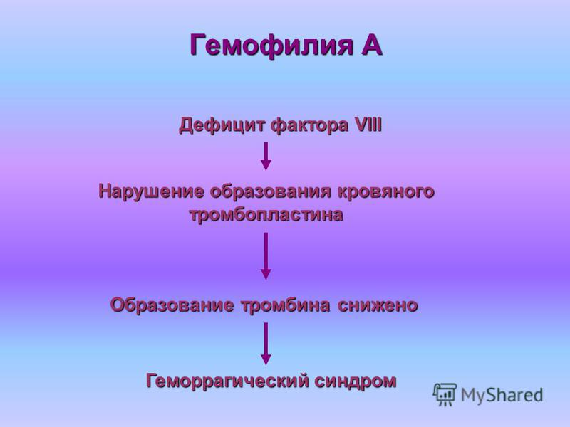 Гемофилия А Дефицит фактора VIII Нарушение образования кровяного тромбопластина Образование тромбина снижено Геморрагический синдром