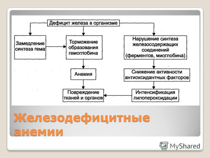 Железодефицитные анемии
