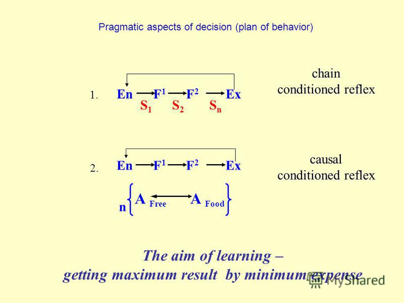 Pragmatic aspects of decision (plan of behavior) causal conditioned reflex The aim of learning – getting maximum result by minimum expense chain conditioned reflex En F 1 F 2 Ex 1. A Free A Food n 2. En F 1 F 2 Ex SnSn S2S2 S1S1