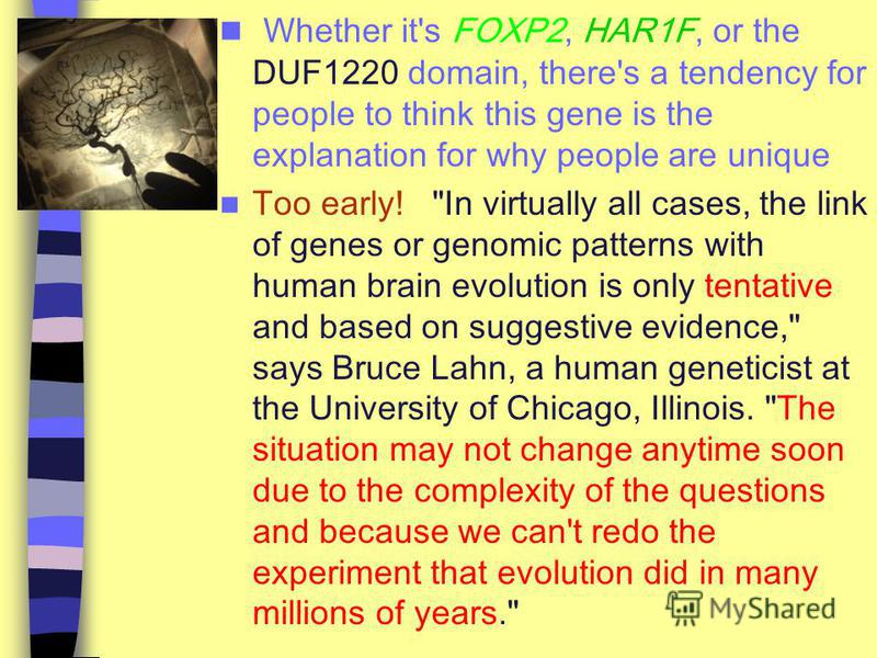 Whether it's FOXP2, HAR1F, or the DUF1220 domain, there's a tendency for people to think this gene is the explanation for why people are unique Too early!