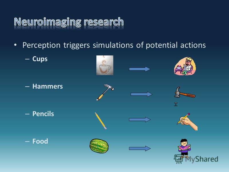 Perception triggers simulations of potential actions – Cups – Hammers – Pencils – Food