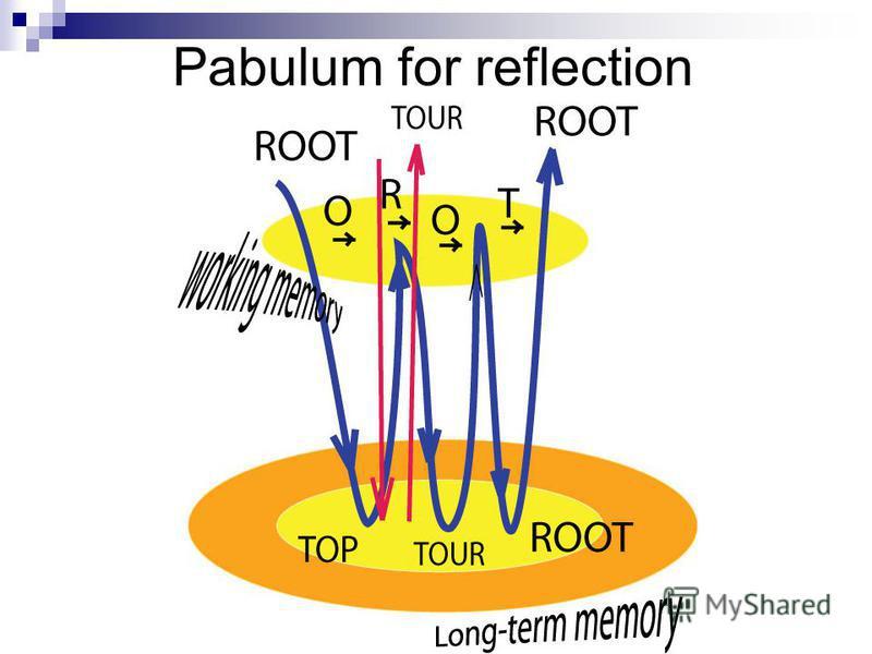 Pabulum for reflection