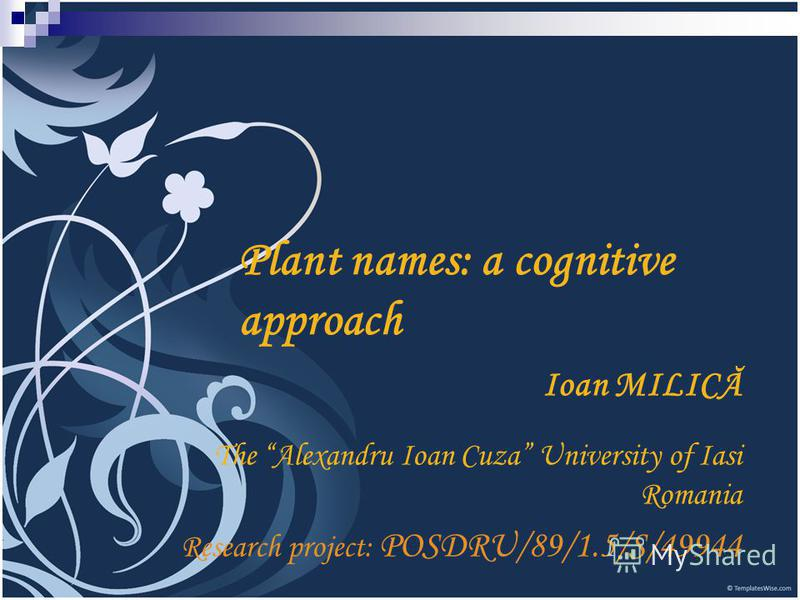 Plant names: a cognitive approach Ioan MILICĂ The Alexandru Ioan Cuza University of Iasi Romania Research project: POSDRU/89/1.5/S/49944