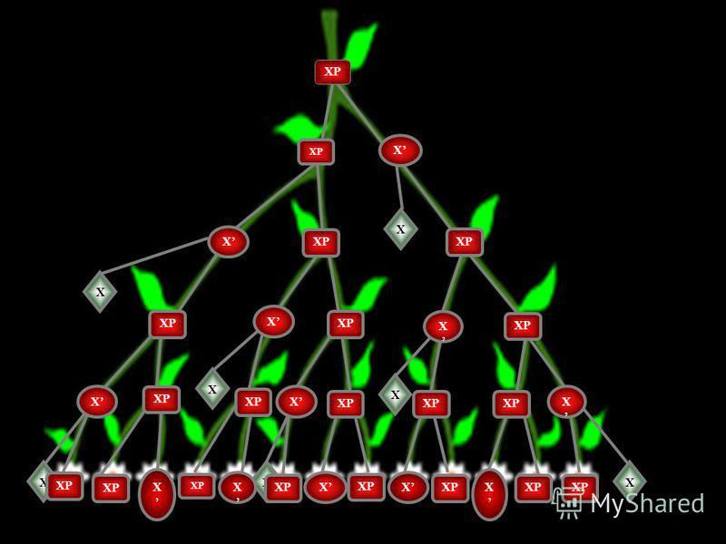 CML 2010 DUBROVNIK X X X X XXX X XP X X X X X X X X X X X