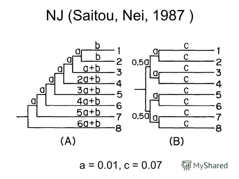 NJ (Saitou, Nei, 1987 ) a = 0.01, c = 0.07