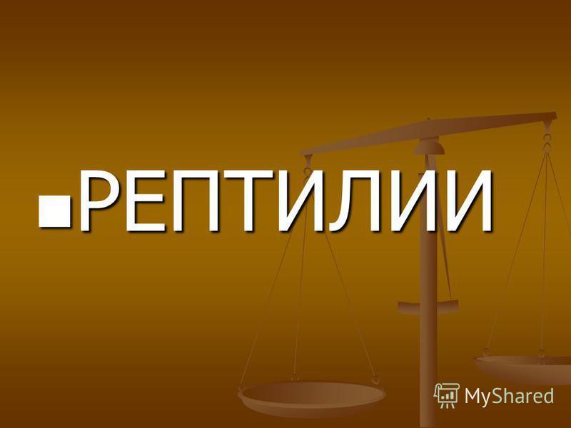 МЛЕКОПИТАЮЩИЕ ----------------------------- БЕЛКА ДЕЛЬФИН КОШКА ОБЕЗЬЯНА ПРЕСМЫКАЮЩИЕСЯ -------------------------------- УДАВ ЧЕРЕПАХА ЯЩЕРИЦА КРОКОДИЛ