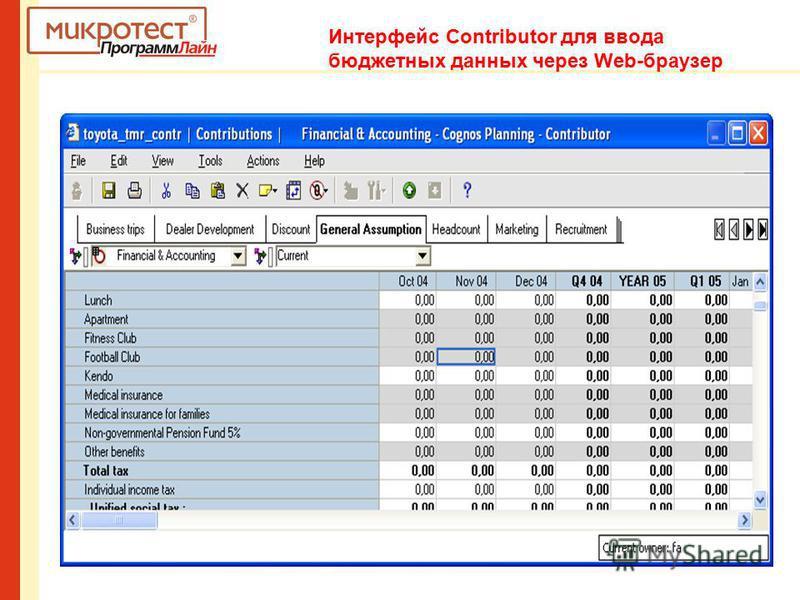 Интерфейс Contributor для ввода бюджетных данных через Web-браузер