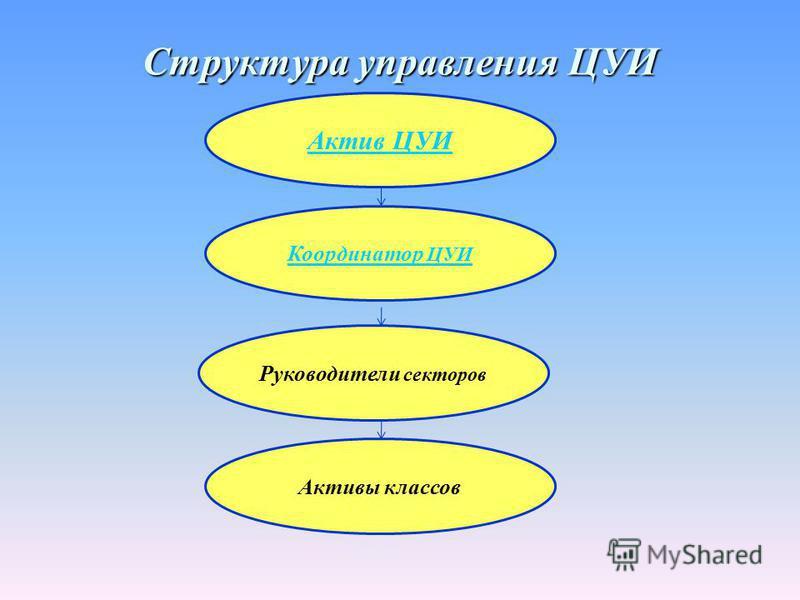 Структура управления ЦУИ Актив ЦУИ Координатор ЦУИ Руководители секторов Активы классов