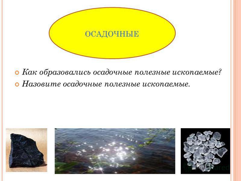 Как образовались осадочные полезные ископаемые? Назовите осадочные полезные ископаемые. ОСАДОЧНЫЕ