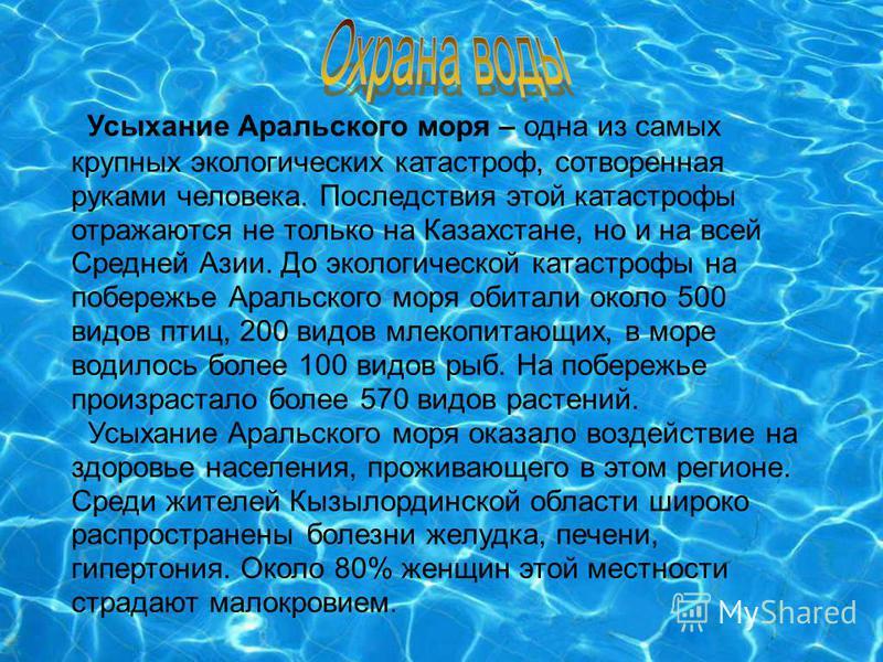 Усыхание Аральского моря – одна из самых крупных экологических катастроф, сотворенная руками человека. Последствия этой катастрофы отражаются не только на Казахстане, но и на всей Средней Азии. До экологической катастрофы на побережье Аральского моря