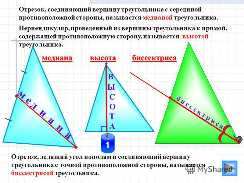 м е д и а н а Отрезок, делящий угол пополам и соединяющий вершину треугольника с точкой противоположной стороны, называется биссектрисой треугольника. медиана биссектриса 1 В Ы С О Т А б и с с е к т р и с а Перпендикуляр, проведенный из вершины треуг