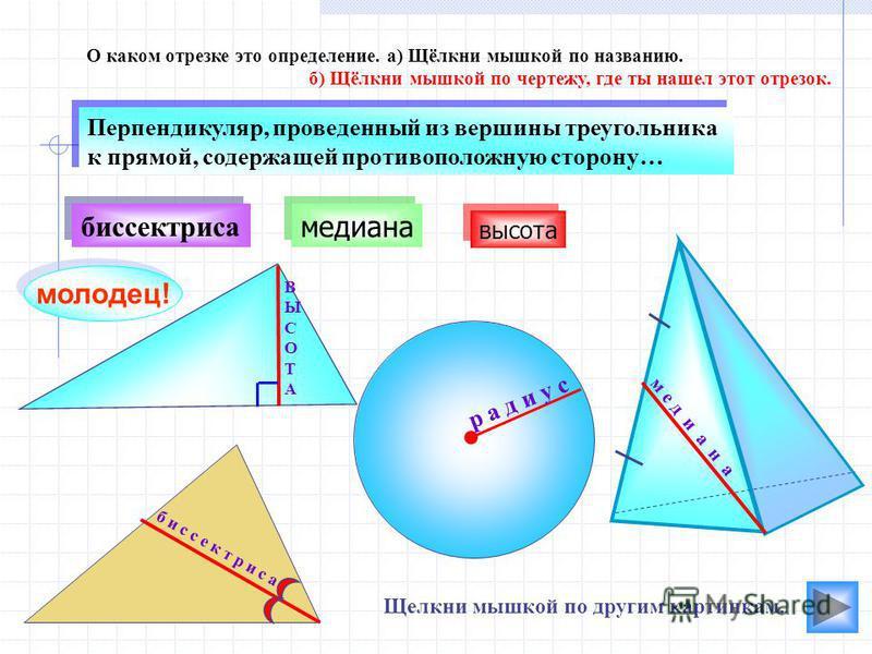 В Ы С О Т А медиана биссектриса О каком отрезке это определение. а) Щёлкни мышкой по названию. б) Щёлкни мышкой по чертежу, где ты нашел этот отрезок. молодец! м е д и а н а б и с с е к т р и с а Перпендикуляр, проведенный из вершины треугольника к п
