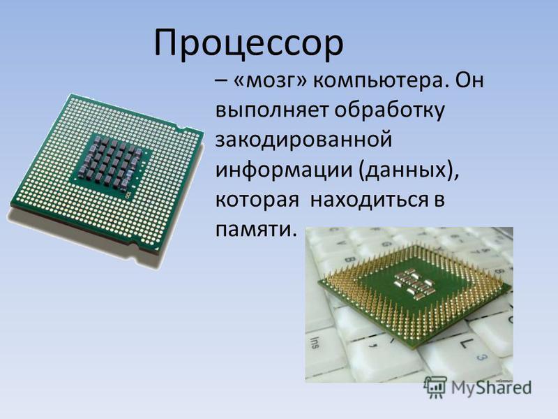 – «мозг» компьютера. Он выполняет обработку закодированной информации (данных), которая находиться в памяти. Процессор