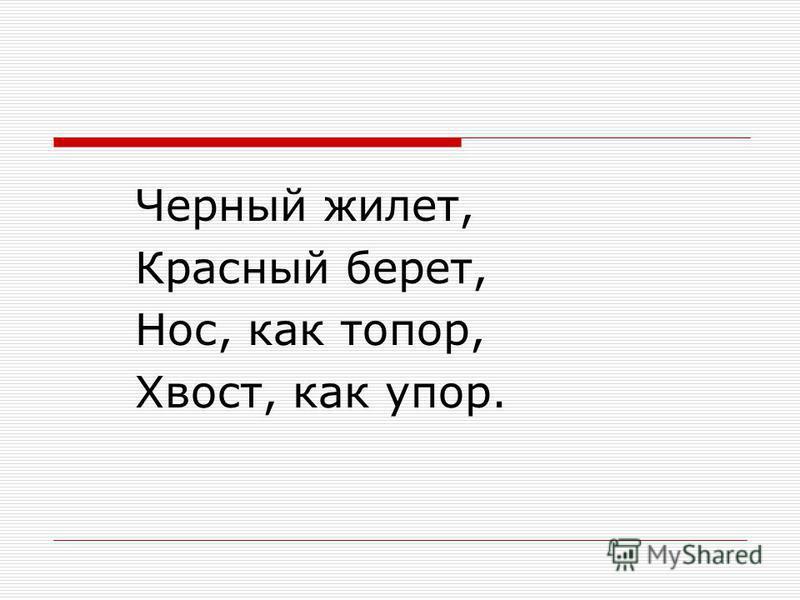 Черный жилет, Красный берет, Нос, как топор, Хвост, как упор.
