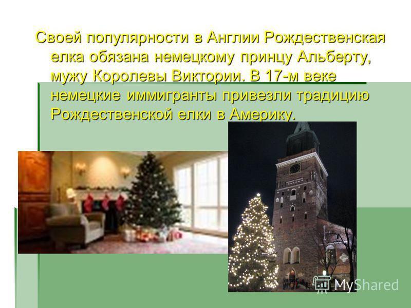 Своей популярности в Англии Рождественская елка обязана немецкому принцу Альберту, мужу Королевы Виктории. В 17-м веке немецкие иммигранты привезли традицию Рождественской елки в Америку.