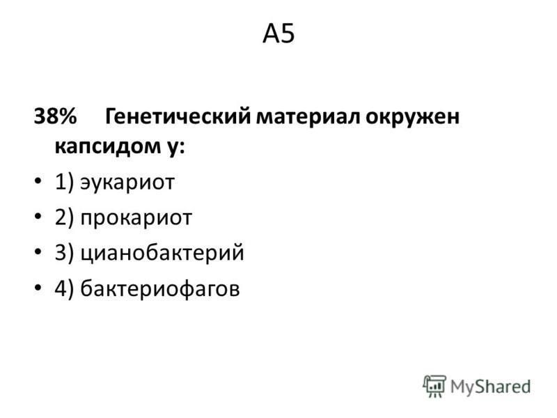 А5 38% Генетический материал окружен капсидом у: 1) эукариот 2) прокариот 3) цианобактерий 4) бактериофагов