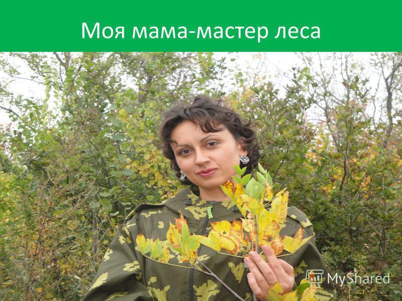 Моя мама-мастер леса