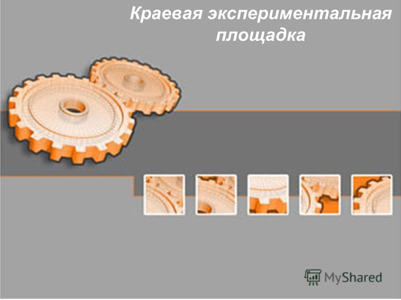 Краевая экспериментальная площадка