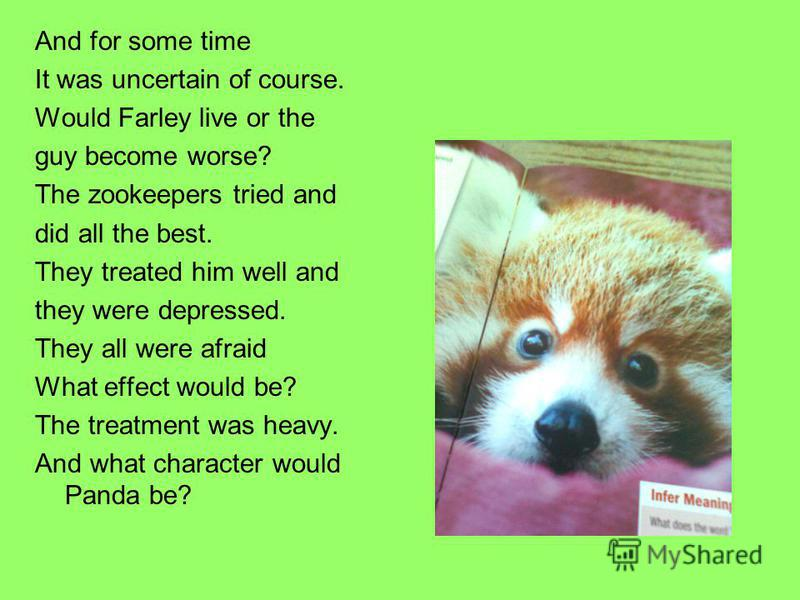 And for some time It was uncertain of course. Would Farley live or the guy become worse? The zookeepers tried and did all the best. They treated him well and they were depressed. They all were afraid What effect would be? The treatment was heavy. And