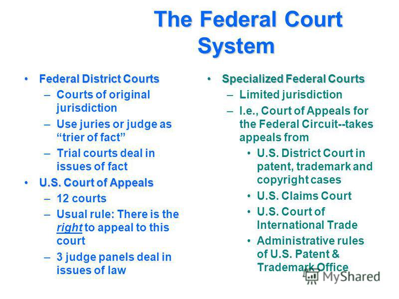 The Federal Court System The Federal Court System Federal District CourtsFederal District Courts –Courts of original jurisdiction –Use juries or judge as trier of fact –Trial courts deal in issues of fact U.S. Court of AppealsU.S. Court of Appeals –1