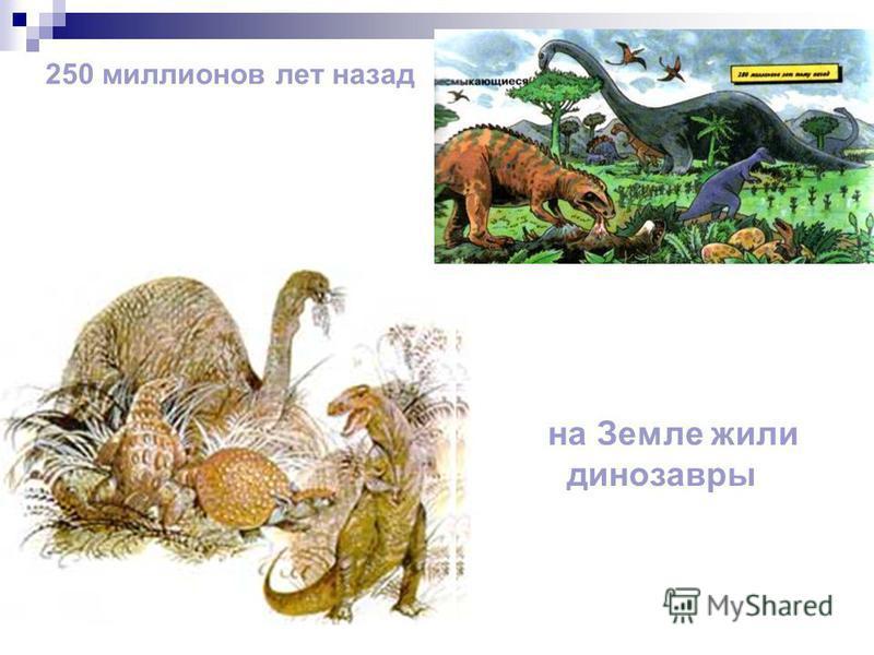 250 миллионов лет назад на Земле жили динозавры