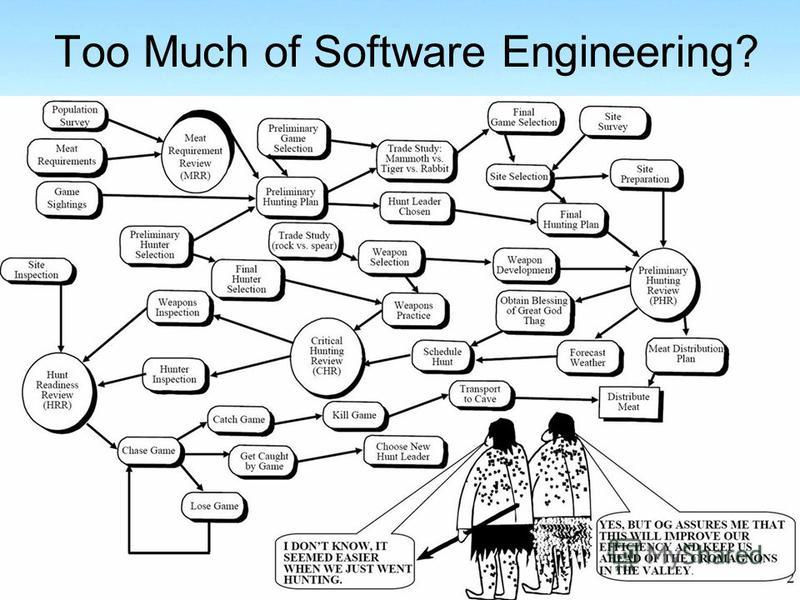 Too Much of Software Engineering?