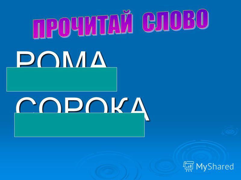 РОМАСОРОКА