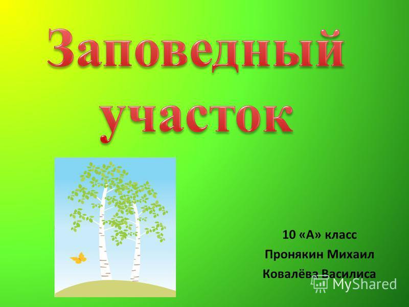 10 «А» класс Пронякин Михаил Ковалёва Василиса
