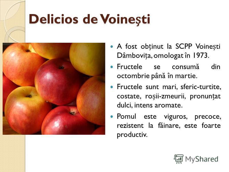 Delicios de Voineti A fost obinut la SCPP Voineti Dâmbovia, omologat în 1973. Fructele se consum ă din octombrie pân ă în martie. Fructele sunt mari, sferic-turtite, costate, roii-zmeurii, pronunat dulci, intens aromate. Pomul este viguros, precoce,