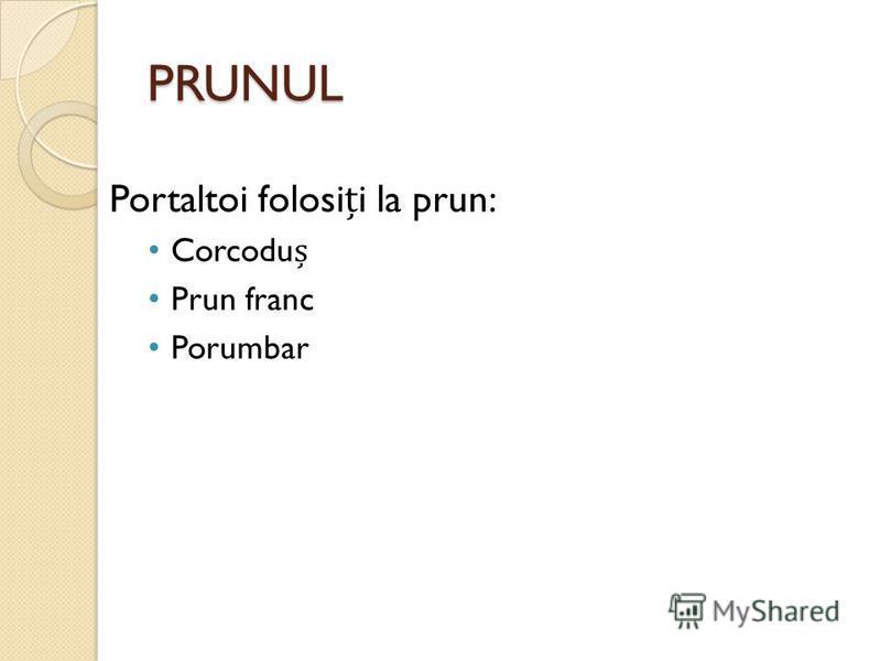 PRUNUL Portaltoi folosii la prun: Corcodu Prun franc Porumbar