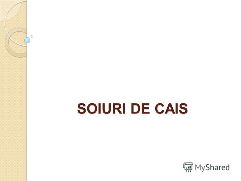 SOIURI DE CAIS