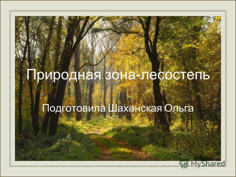 Природная зона-лесостепь Подготовила Шаханская Ольга