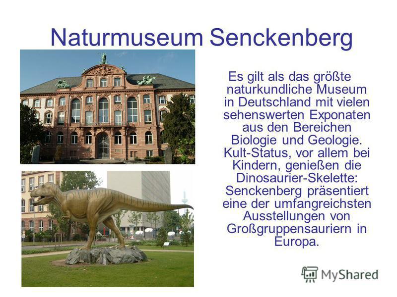 Naturmuseum Senckenberg Es gilt als das größte naturkundliche Museum in Deutschland mit vielen sehenswerten Exponaten aus den Bereichen Biologie und Geologie. Kult-Status, vor allem bei Kindern, genießen die Dinosaurier-Skelette: Senckenberg präsenti