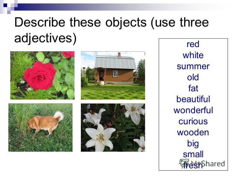Describe these objects (use three adjectives) red white summer old fat beautiful wonderful curious wooden big small fresh