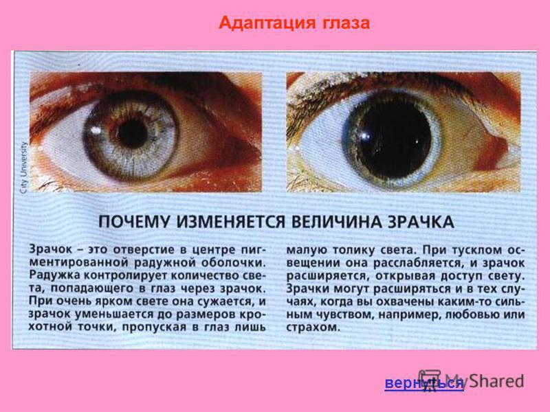 Адаптация глаза вернуться
