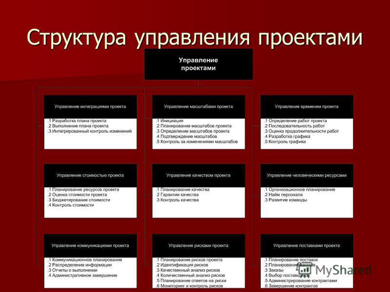 Структура управления проектами