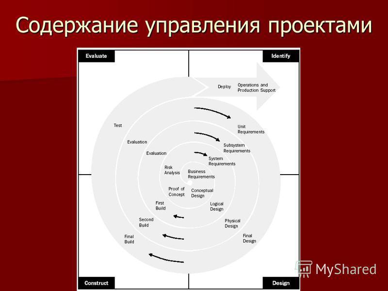 Содержание управления проектами